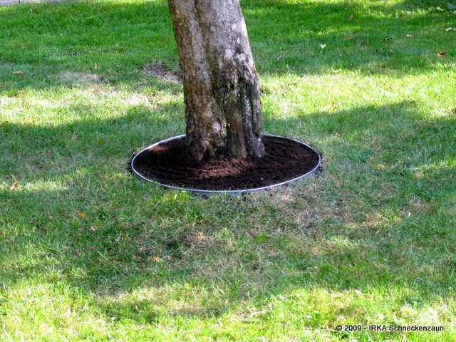 Rasenkante Edelstahl rasenkante edelstahl rund backburner grill nachrüsten